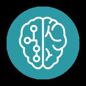 Neurofeedback dynamique photo cerveau